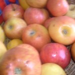 Teresa and the apple